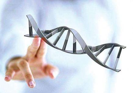 杭州双螺旋基因攻城狮夏令营