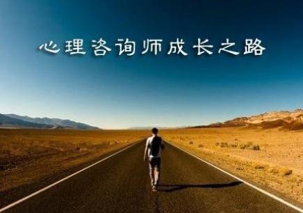 武汉心理咨询师一级培训