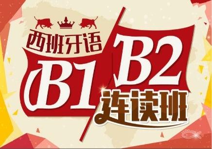 西班牙语B1-B2培训