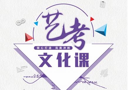 龙华艺考文化课辅导