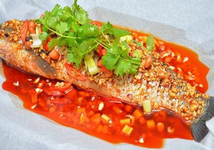 台州纸上烤鱼培训