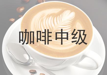 咖啡中级课程