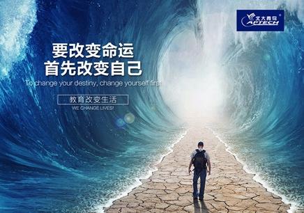 北大青鸟.NET开发培训