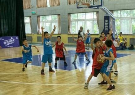 城西区篮球速成班哪好