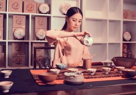 深圳中级茶艺培训课程