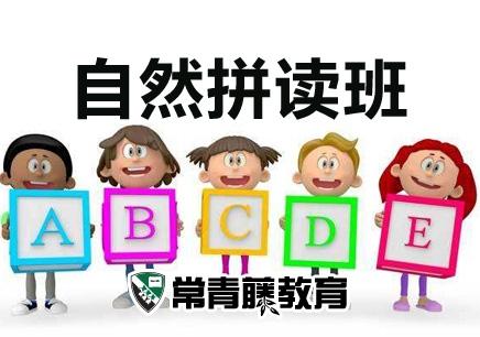 南京英语拼读培训班