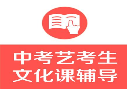 深圳艺考生文化课辅导