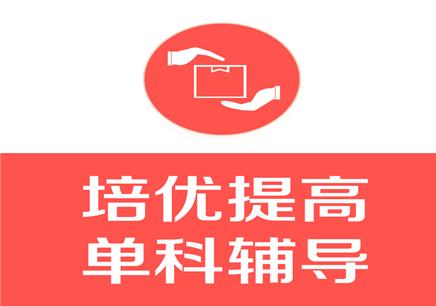 深圳初中单科辅导提升班
