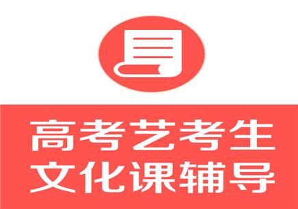 深圳高考艺考生文化课辅导班