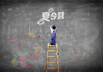 北京夏令营专业机构
