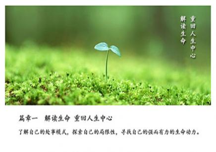 上海《生命的绽放》课程培训班