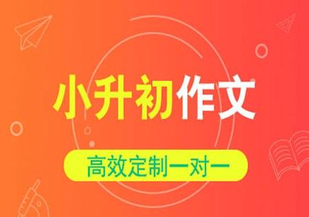 杭州小升初培训班