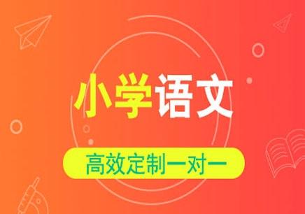杭州小学语文培训班