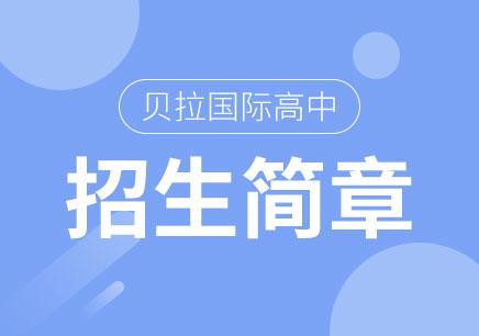 北京国际高中报名条件