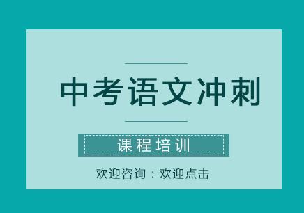 重庆大学城语文辅导