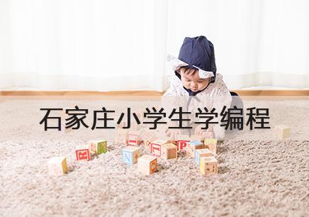 石家庄少年自学编程暑假