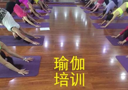 2019南阳专业瑜伽培训中心