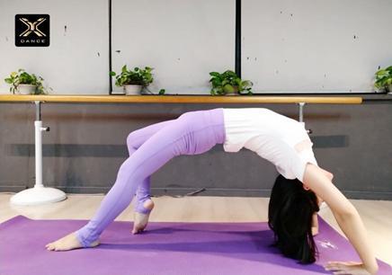 成人舞韵瑜伽