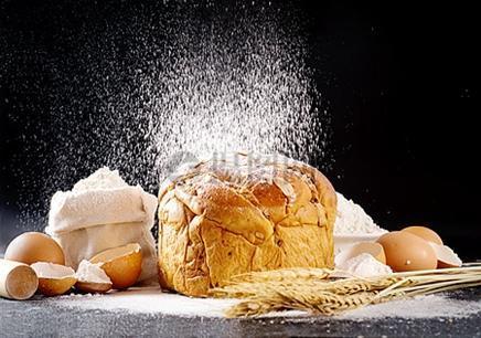 福州面包培训中心