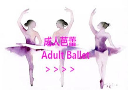 向日葵芭蕾舞培训