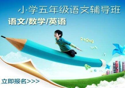 北京精锐小学五年级语文同步辅导课程