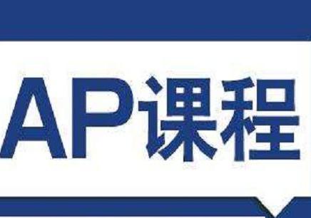 广州AP培训班多少钱