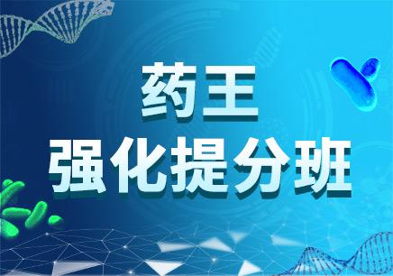 药王·强化提分班(执业药师)