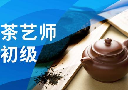 初级茶艺师培训课程