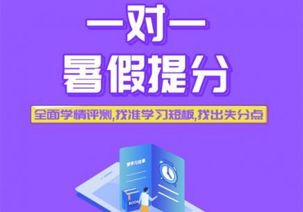 深圳暑假家教辅导一对一