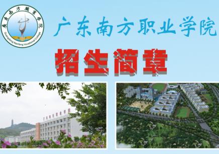 广东南方职业学院-2019成人高考招生简章