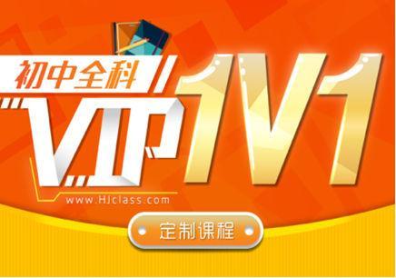 滬江初三化學1對1 VIP定制課程