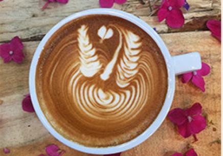 合肥咖啡培訓班