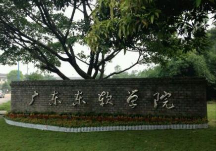 廣東東軟陽江成人學歷招生