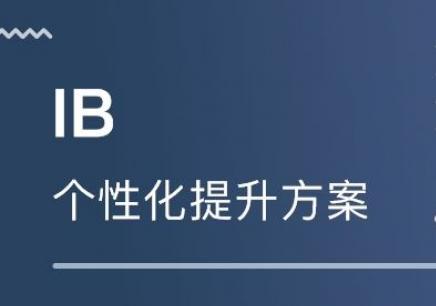 北京IB課程培訓班