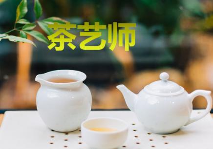 江门蓬江区茶艺师学习班