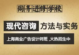 现代咨询方法与实务 上海