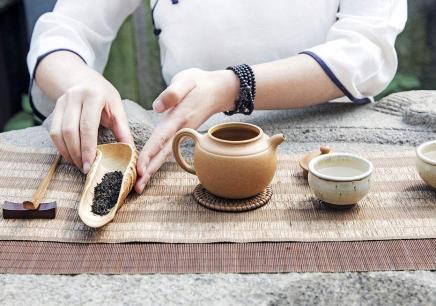 国家鉴茶师(初级、中级)综合课程表