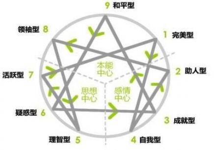 国际九型人格