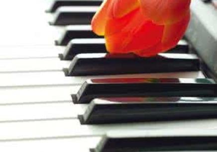 广州嘉谊轩钢琴培训课