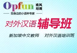 新加坡中文教师对外汉语培训班