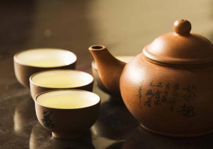 初级茶艺师培训