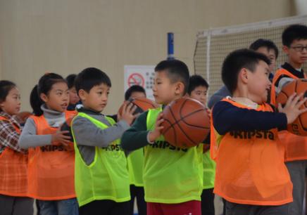 上海的青少年篮球培训班费用