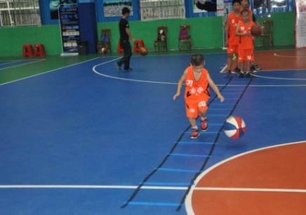 上海的篮球培训学费