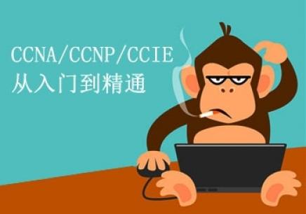 CCNP培训课程