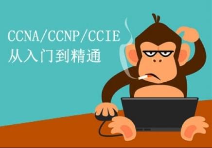 CCIE网络安全冲刺班