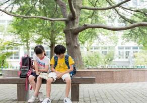 南京康语社交沟通课