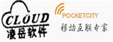 深圳凌岳软件