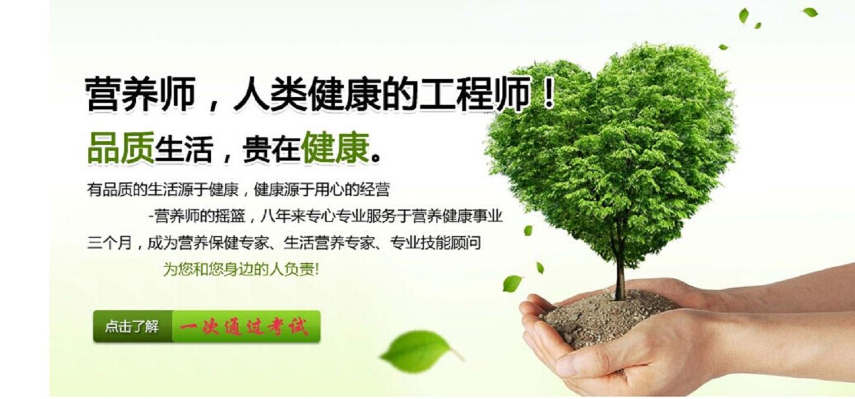 2015深圳产业结构