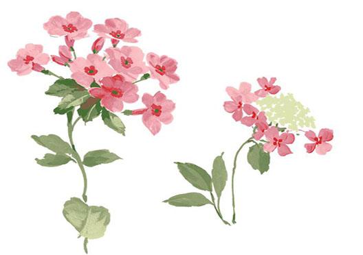 首页 深圳 绘画 少儿手绘中级班 少儿手绘中级班  丙烯:静物,花卉