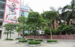 广州信星环境实拍